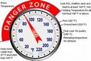 food-themometer