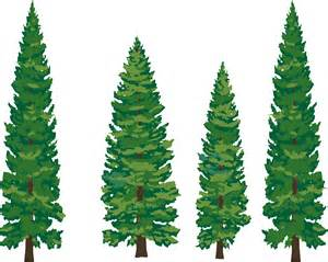 trees-blog-clip-art